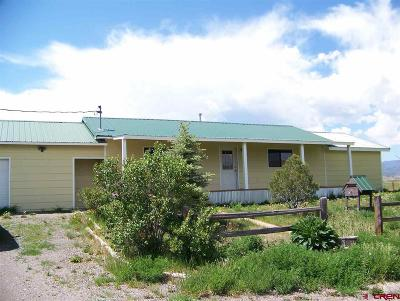Del Norte Single Family Home For Sale: 282 Indian Head