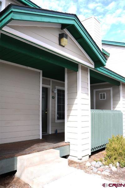 Durango Condo/Townhouse For Sale: 1100 Goeglein Gulch #160