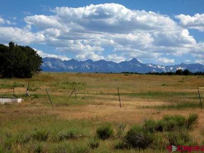 Montrose Residential Lots & Land For Sale: 230 Snowy Peaks