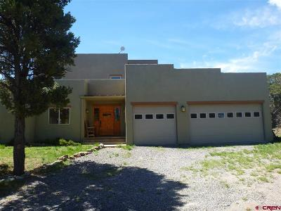 Ridgway Single Family Home For Sale: 25 Pinnacle