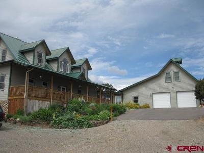 Del Norte Single Family Home For Sale: 5709 County Road 14