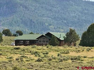 Pagosa Springs Single Family Home For Sale: 200 Golden Spruce