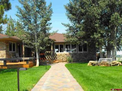 Montrose Single Family Home For Sale: 59225 Spring Creek