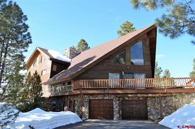 Pagosa Springs Single Family Home For Sale: 423 Martinez