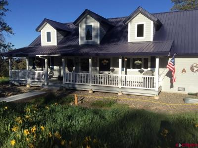 Pagosa Springs Single Family Home For Sale: 25 Cougar Court
