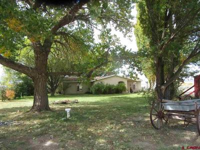 Cortez Single Family Home For Sale: 2161 Hwy 160/491