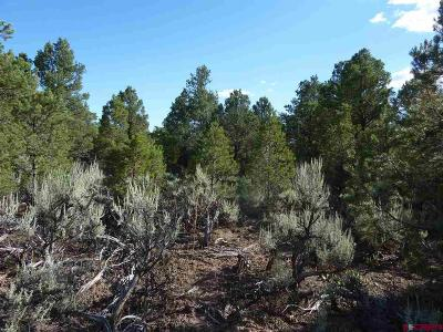 Cedaredge Residential Lots & Land For Sale: 11 Wild Turkey Drive