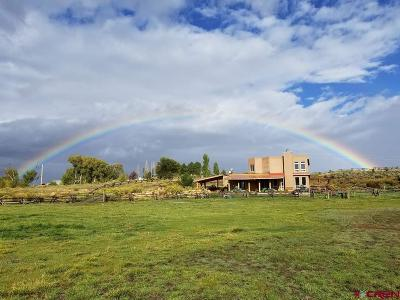 Mancos Single Family Home For Sale: 8280 Road 39