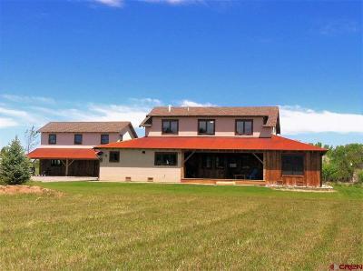 Montrose Single Family Home For Sale: 63260 Orange