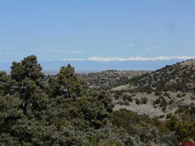 Del Norte Residential Lots & Land For Sale: 537 Rim Rock Pass