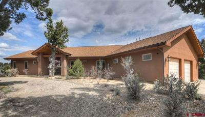 Mancos Single Family Home For Sale: 35505 Road K.1