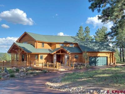 Durango Single Family Home For Sale: 281 Tristan