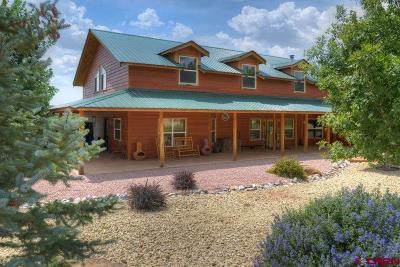 Mancos Single Family Home For Sale: 40850 Road H