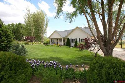 Delta CO Single Family Home For Sale: $359,000