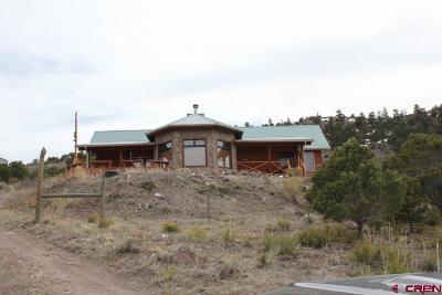 Del Norte Single Family Home For Sale: 250 Antelope Trail