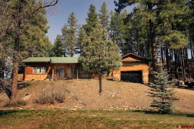 Pagosa Springs Single Family Home For Sale: 541 Jack Rabbit