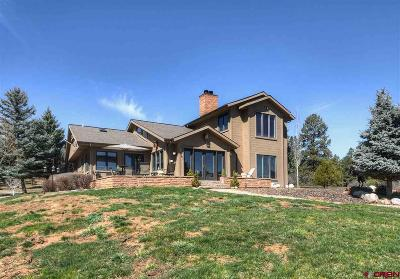 La Plata County Single Family Home For Sale: 160 Shiloh
