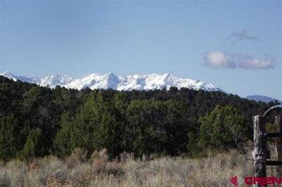 Montrose CO Residential Lots & Land For Sale: $174,950