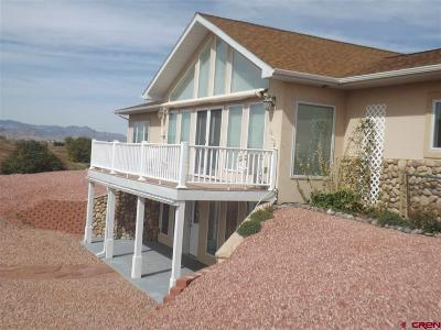 Del Norte Single Family Home For Sale: 5334 W County Road 6 N