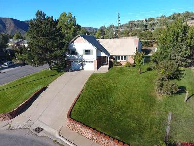 Durango Single Family Home For Sale: 1607 Forest