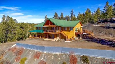 Pagosa Springs Single Family Home For Sale: 255 Bradley Place
