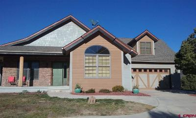 Mancos Single Family Home For Sale: 45256 Road J.8