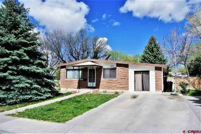 Montrose Single Family Home For Sale: 109 Vista View