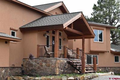 Ouray County Single Family Home For Sale: 1096 Ponderosa