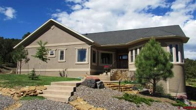 Ridgway Single Family Home For Sale: 44 Pinon Road East