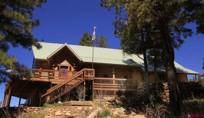 Pagosa Springs Single Family Home For Sale: 484 Starling