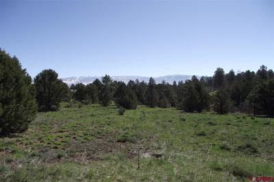 Ridgway CO Residential Lots & Land For Sale: $34,950