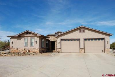 Dolores Single Family Home For Sale: 17200 Road 23