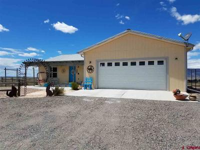 Delta Single Family Home For Sale: 5653 Paradise