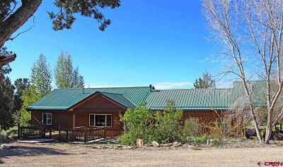 Mancos Single Family Home For Sale: 35636 Road J.8