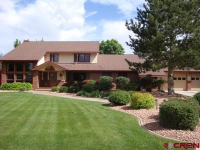 Montrose Single Family Home For Sale: 62328 North Star