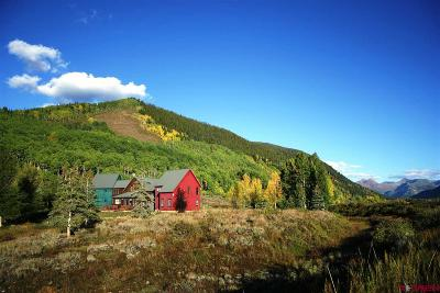 Crested Butte CO Single Family Home For Sale: $4,100,000