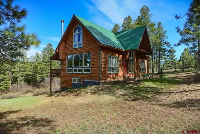 Pagosa Springs Single Family Home For Sale: 141 Buena Vista Place