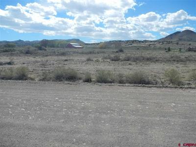 Del Norte Residential Lots & Land For Sale: 732 Frisco Creek