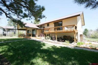 Durango Single Family Home For Sale: 62 Cedar