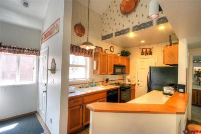 La Plata County Condo/Townhouse For Sale: 166 Yankee Girl Ct