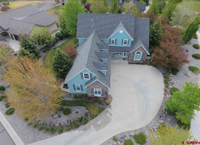Montrose Single Family Home For Sale: 4000 Pioneer