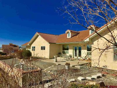 Montrose Single Family Home For Sale: 16350 6750
