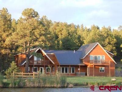 Pagosa Springs Single Family Home For Sale: 1816 County Road 600