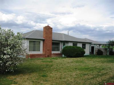 Montrose Single Family Home For Sale: 1595 E Oak Grove