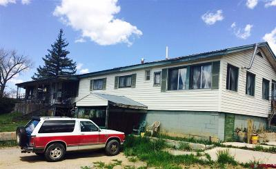 Bayfield Single Family Home For Sale: 40355 E Hwy 160