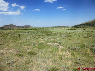 Del Norte Residential Lots & Land For Sale: 379 Wagon Wheel Road