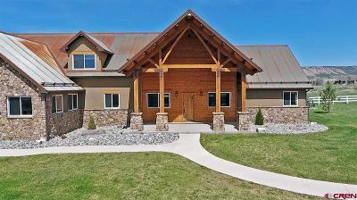 Montrose Single Family Home For Sale: 23471 Uncompahgre
