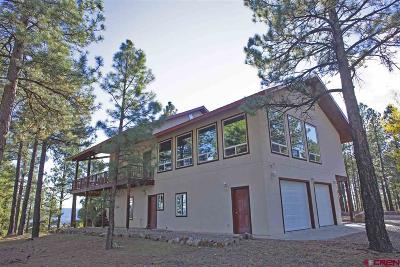 Pagosa Springs Single Family Home For Sale: 2505 County Rd 600