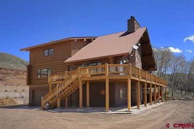Creede Single Family Home For Sale: 2310 Forest Service Rd 504
