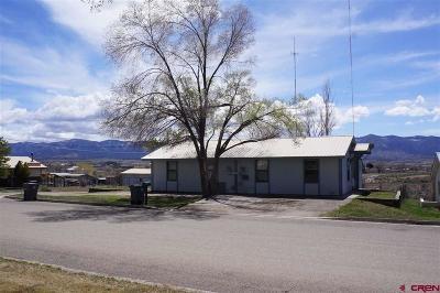 Cortez Multi Family Home For Sale: 2427 Trinity